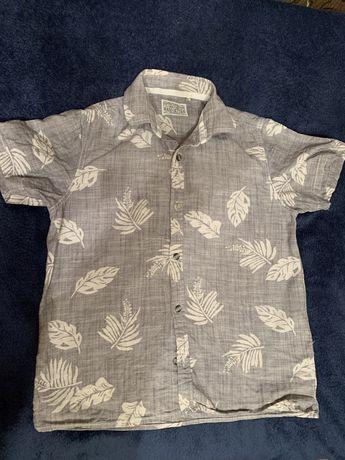 Next 8р сорочка рубашка