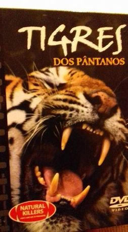 DVD Tigres dos Pântanos