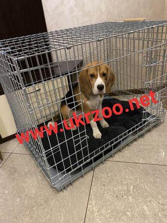 Вольер клетка для кота собаки щенка хаски стафа бигля стаффа овчарки