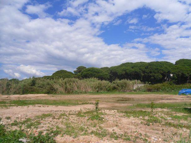 Terreno Agricola