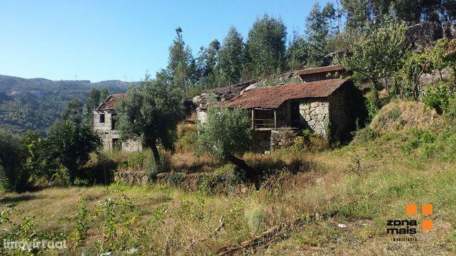 Quinta  Venda em Carvalho e Basto (Santa Tecla),Celorico de Basto