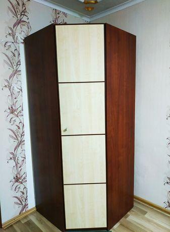 Шкаф вместительный