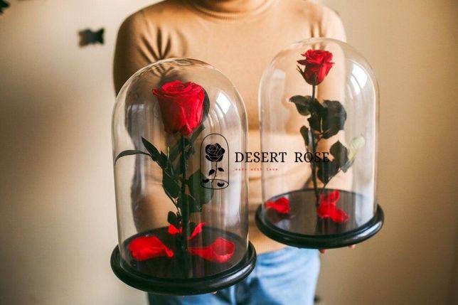 Роза в колбе 32х22 см/цветы/ЄВРОПА/Premium качество