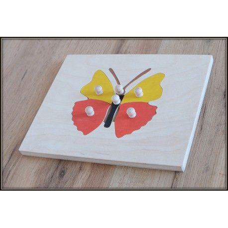 Ukł. budowa motyla, montessori