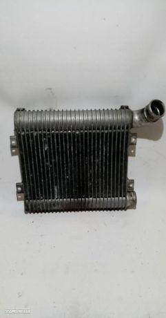 Radiador Do Intercooler Hyundai Santa Fé I (Sm)