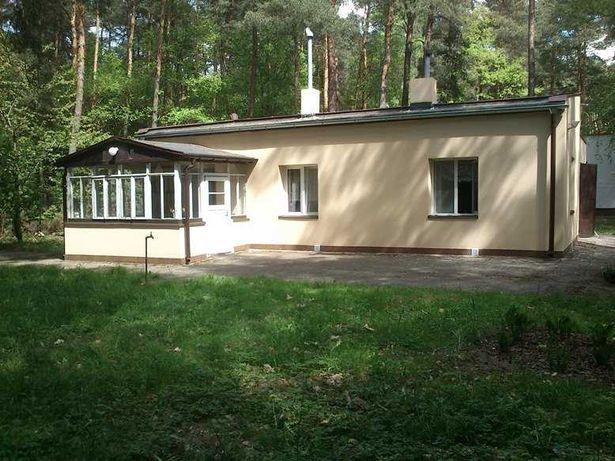 Wynajmę działkę w Sokolnikach Lesie