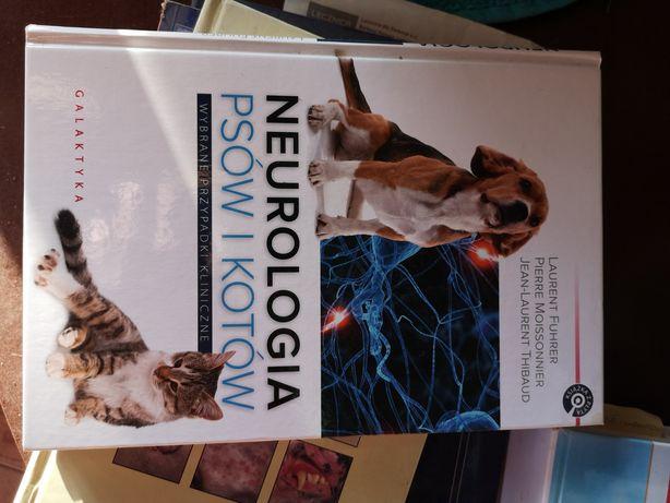 Neurologia psów i kotów
