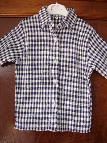 camisas 4 anos novas
