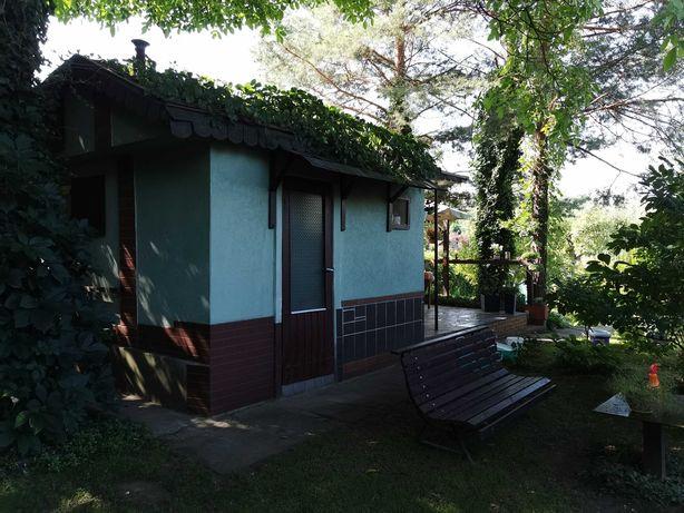 Ogródek działkowy Tarnowskie Góry