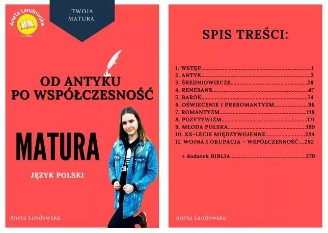 E-book Od antyku po współczesność matura język polski