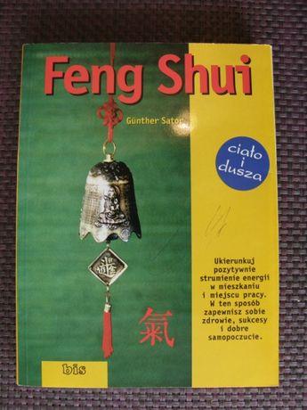 Feng Shui -- Gunther Sator