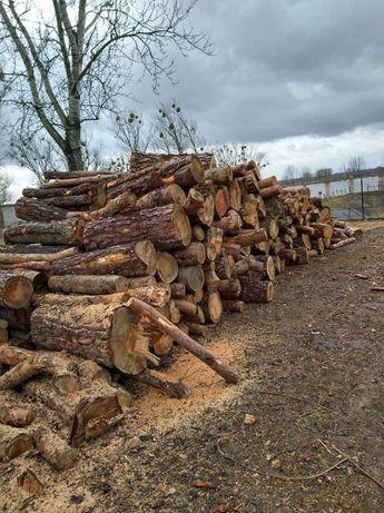 Drewno opałowe i kominkowe Przedecz i okolice