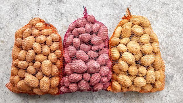 Ziemniaki jadalne Lord, Denar, Jelly, Bellarosa. Transport!