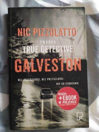 Nic. Galveston Pizzolatto - twórca true detective