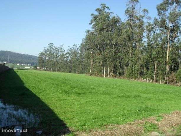 Terreno industrial, novo, para venda, Póvoa de Varzim - Rates