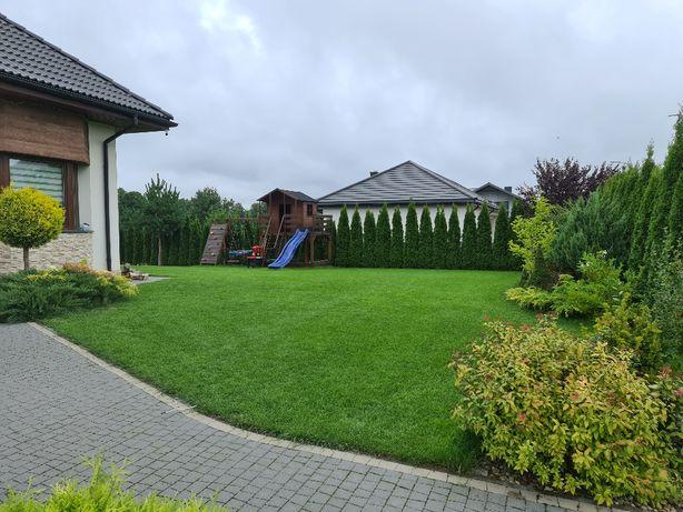 Trawniki - jesienna pielęgnacja i kompleksowa renowacja trawników