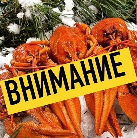 Настоящие РАКИ без ВОНИ ! Не базар! Шевченко 319