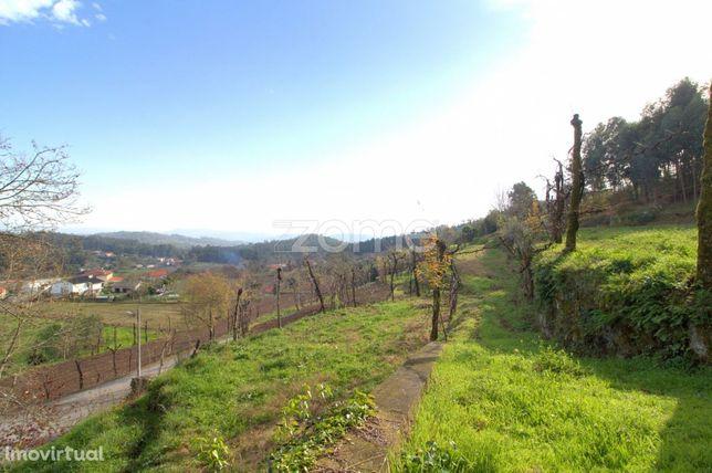 Terreno agrícola e florestal em Espinho, Braga
