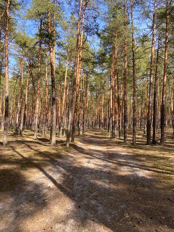 Продам землю Вознесенский район
