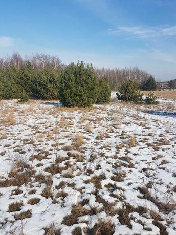 Działka Kąty Węgierskie gm. Nieporęt, okolice Legionowa,ok. 2500 m2