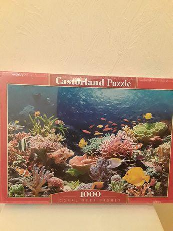 Пазлы 1000 Castorland