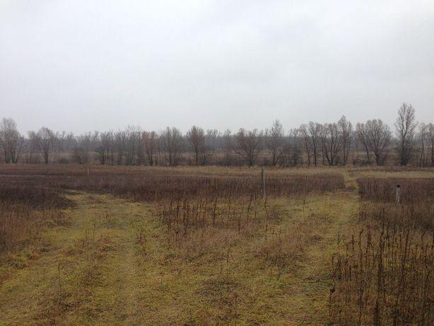 Земля Литвиновка