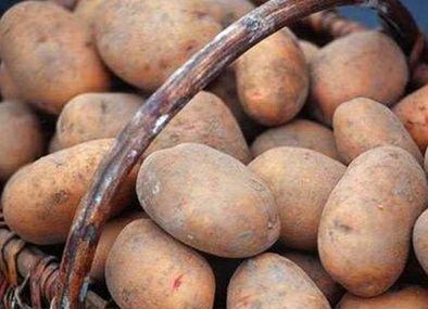 Домашня картопля, часник