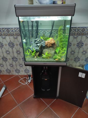 Aquário aquatlantis 150 litros com tudo incluído
