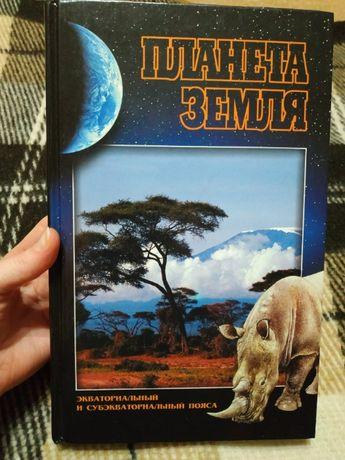 Планета Земля Экваториальный и субэкваториальный пояса Кряжимская