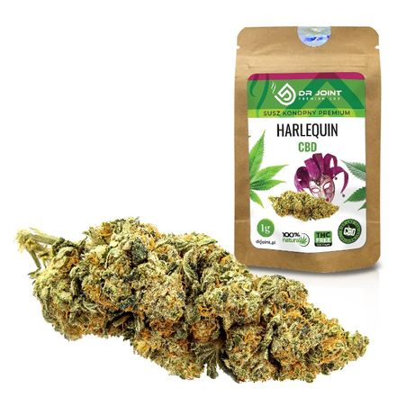 Dr Joint Susz Konopny Premium CBD Harlequin 1g Konopie Hurt i Detal