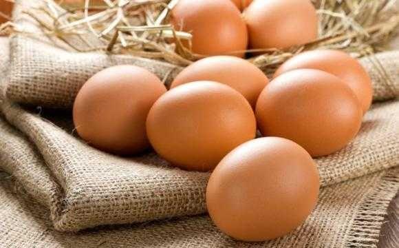 Ovos caseiros   galados para incubadora ou consumo
