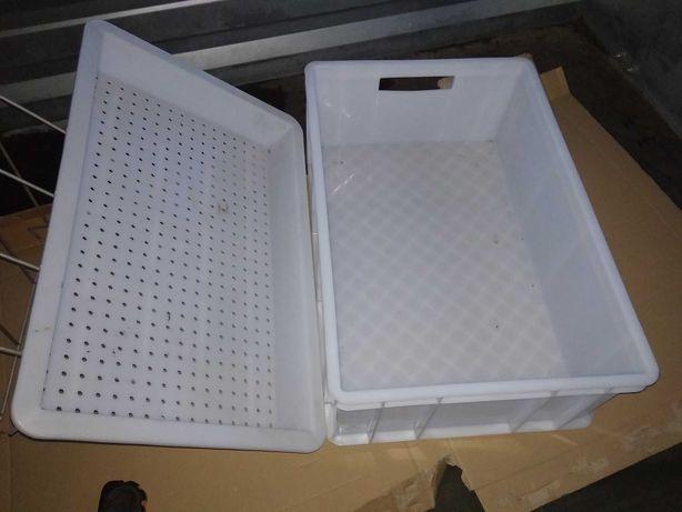 Pojemnik plastikowy z ociekaczem