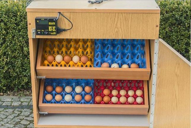 Inkubator PÓŁAUTOMATYCZNY 120-180 JAJ nowy wylegarka 2 szuflady FILM