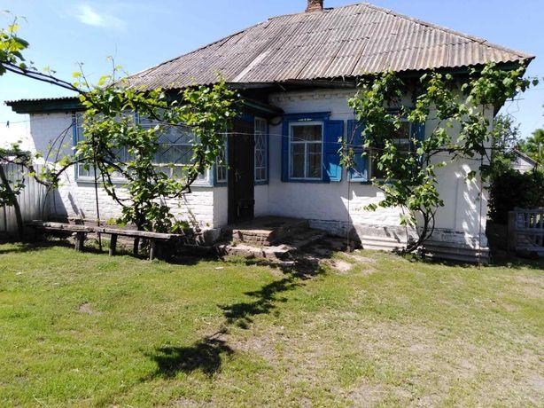 Продам будинок в селі Ліпляве, Черкаської обл., Канівського р-н