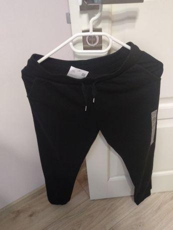 Спортивные брюки  joggers CA 146