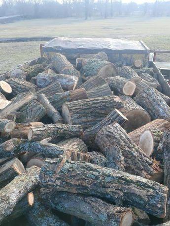 Продажа дров в  чурках твердых пород Акация Дуб Береза