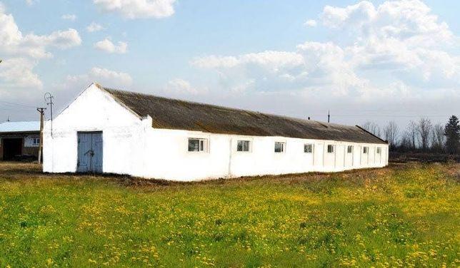 Животноводческая ферма 450 кв м - коровники, свинарники или курятники