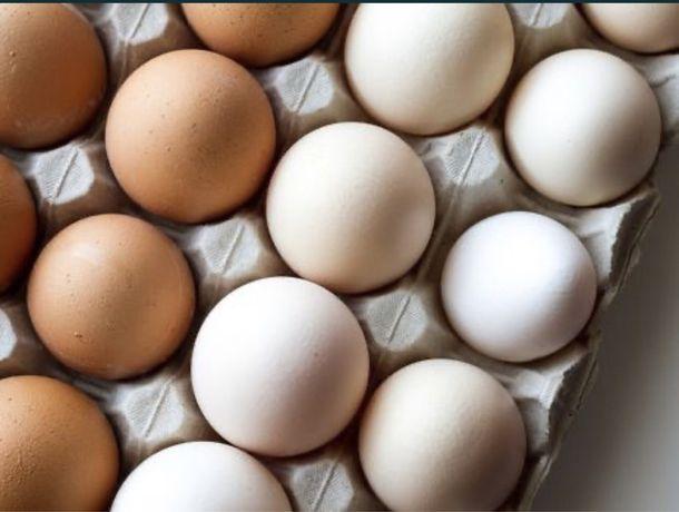 Яйця/півні/кури/птиця