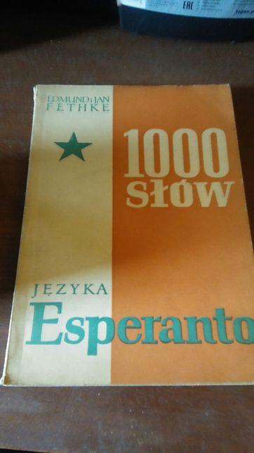 1000 słów języka esperanto.