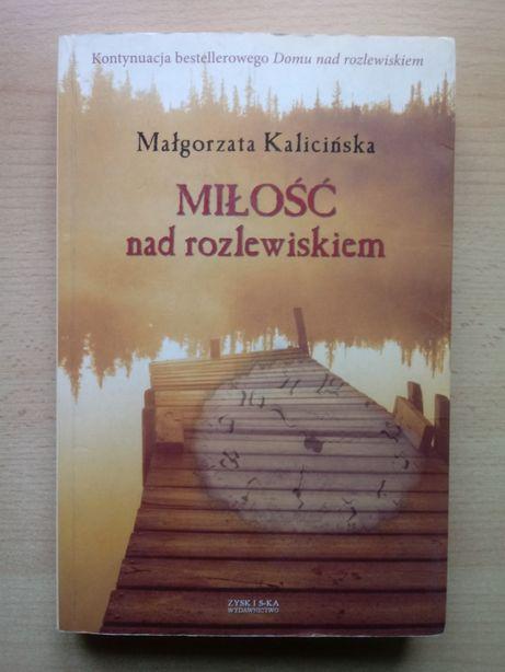 """Małgorzata Kalicińska """"Miłość nad rozlewiskiem"""""""