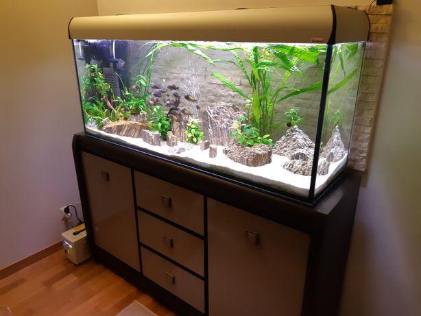 Zestaw akwariowy 240 litrów akwarium Diversa z komoda