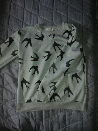 Bluza w jaskółki