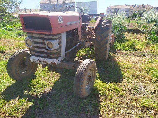 Trator Massey fergusson 165 pronto a trabalhar