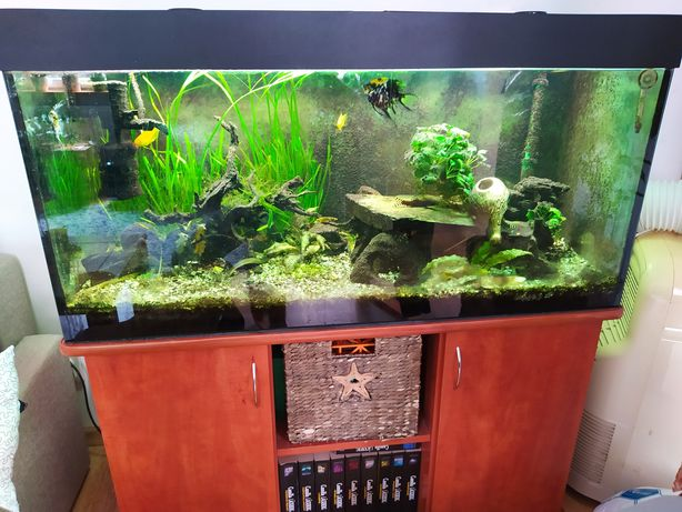 Akwarium 250 litrów + szafka + CO2