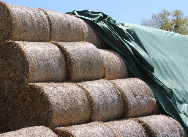Fliz na słomę, siano, buraki ziemniaki agrowłóknina otulina 140g/m2 GW