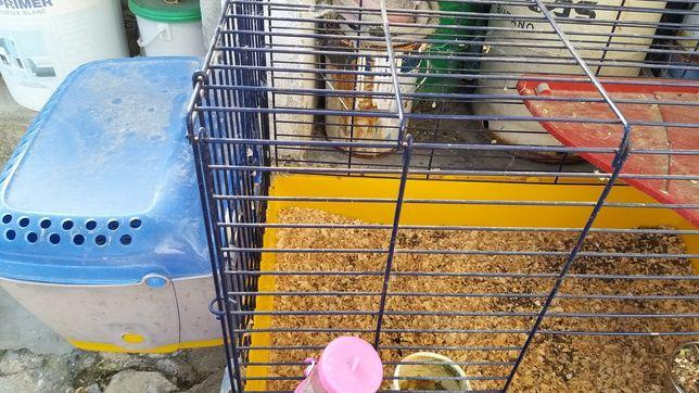 Gaiola de coelho