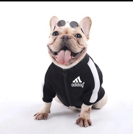 Bluza dla psa czarna i bordowa XXL nowe  adidog