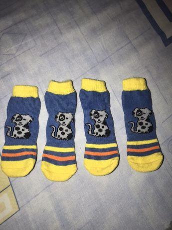 Носочки на собаку
