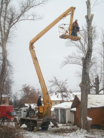 Спил Обрезка деревьев Уборка участков. Выравнивание территории.