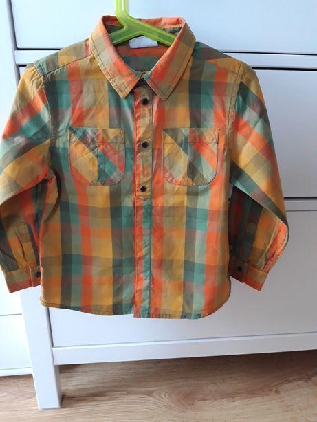 Koszula z dlugim rękawem r.98, coccodrillo